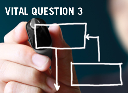 VITAL QUESTION 3